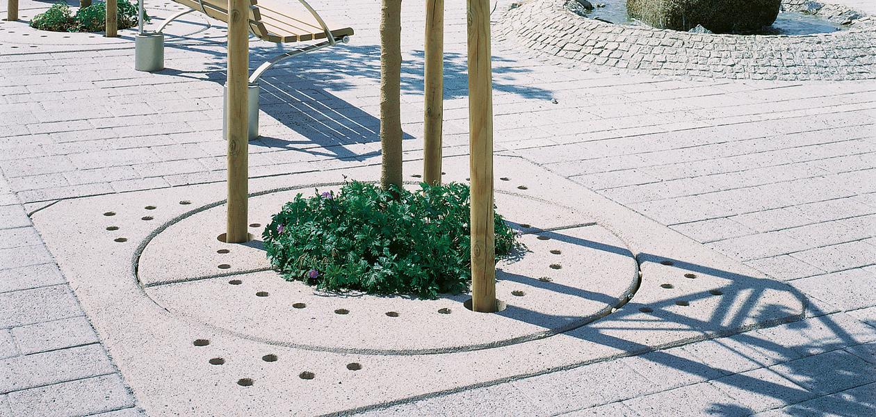 Coupole d'arbre Type 1